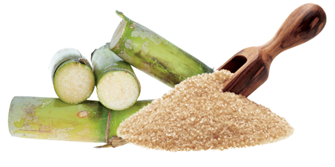 Sugar-and-sugar-cane